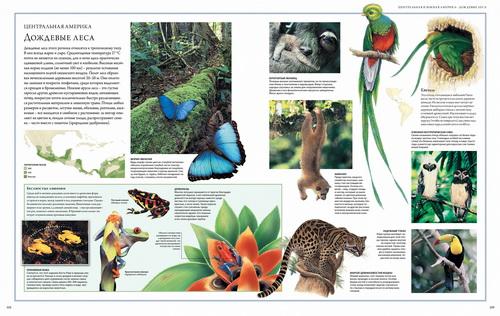 Животный мир. Иллюстрированный атлас