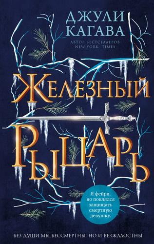 Железный рыцарь (Книга 4)